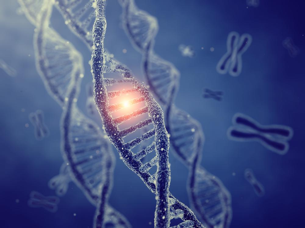 Terapia gênica 3 – Células-tronco e terapia gênica