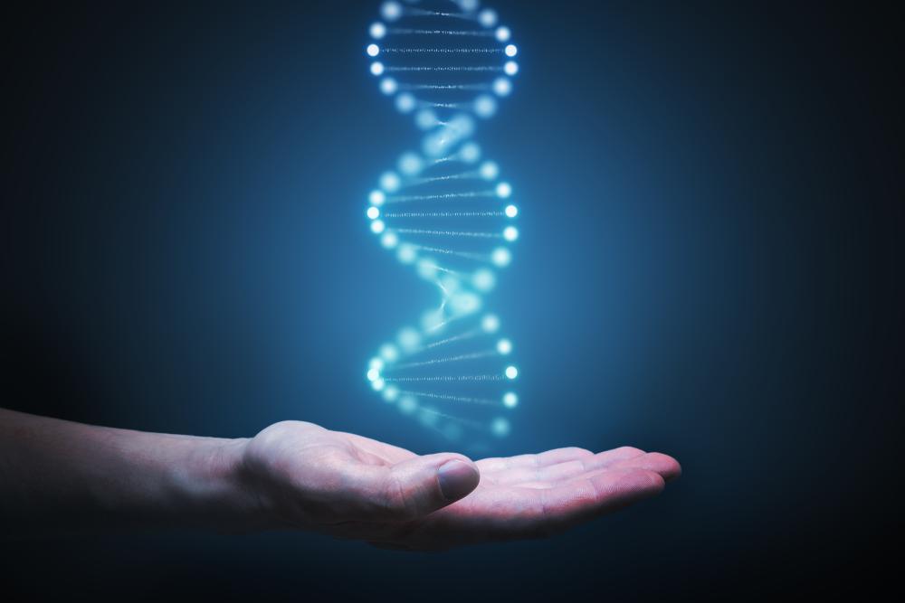 """Células-tronco e edição genética separam mutações """"boas"""" das """"ruins"""", e podem predizer o risco de doença cardíaca"""