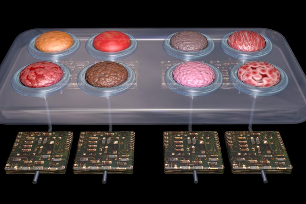 Microfluídica (1): Tecnologia que permite criar órgãos em chips