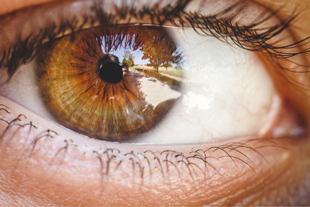 Japão está prestes a aprovar tratamento com células-tronco induzidas para casos de cegueira causada por doenças ou lesões na córnea