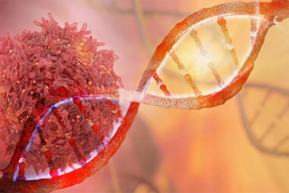 Resistência de alguns tipos de câncer à quimioterapia pode ser reduzida com a ajuda de substâncias liberadas por células-tronco