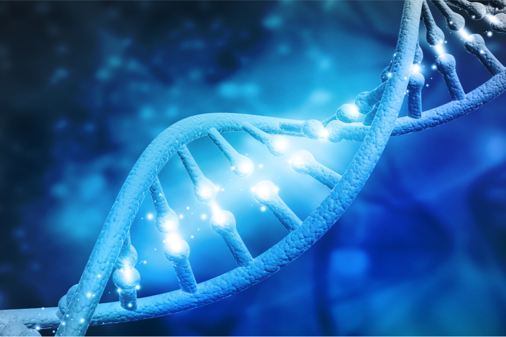 Características moleculares de células-tronco variam de acordo com os biomateriais usados como substratos para seu crescimento