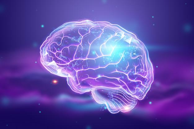 Compostos presentes na Ayahuasca causam surgimento de novos neurônios e podem auxiliar no tratamento de doenças neurológicas