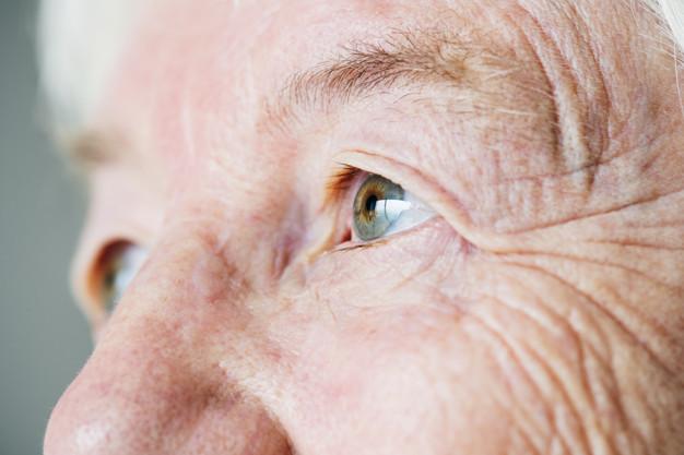 Reprogramação celular rejuvenesce células da retina e recupera a visão